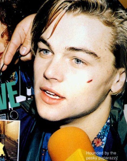 画像 : 来日記念 レオナルド・ディカプリオの若い頃 ... Leonardo Dicaprio