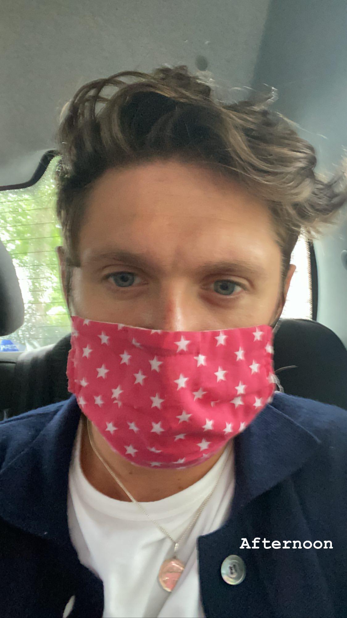 General photo of Niall Horan
