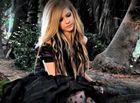 Avril Lavigne : avril-lavigne-1337391274.jpg
