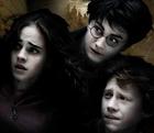Daniel Radcliffe : TI4U_u1220542555.jpg
