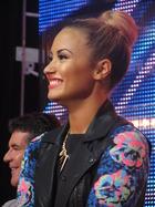 Demi Lovato : demi-lovato-1384381533.jpg