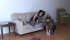 Elisa Victoria : elisa-victoria-1339570174.jpg