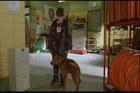 Josh Hutcherson : josh_hutcherson_1214537472.jpg