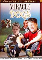 Josh Hutcherson : josh_hutcherson_1232596605.jpg