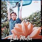 Luke Mullen : luke-mullen-1588965168.jpg