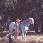 Paris Hilton : paris-hilton-1405560410.jpg