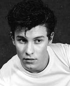 Shawn Mendes : shawn-mendes-1604152223.jpg